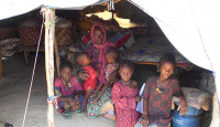 displaced by hunger and violence in the Lake Chad Basin
