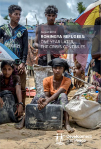 Rohingya Refugees: One Year Later the Crisis Continues